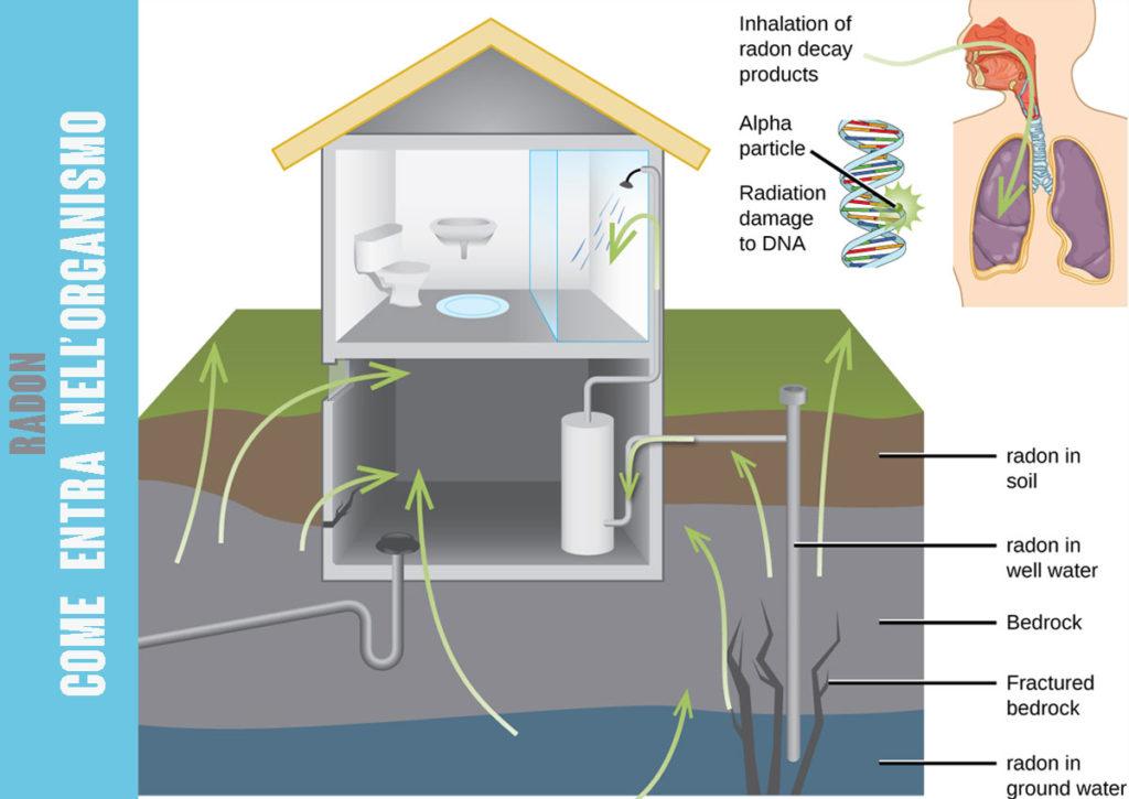 Grafica sul processo di inalazione del radon emesso dal suolo.