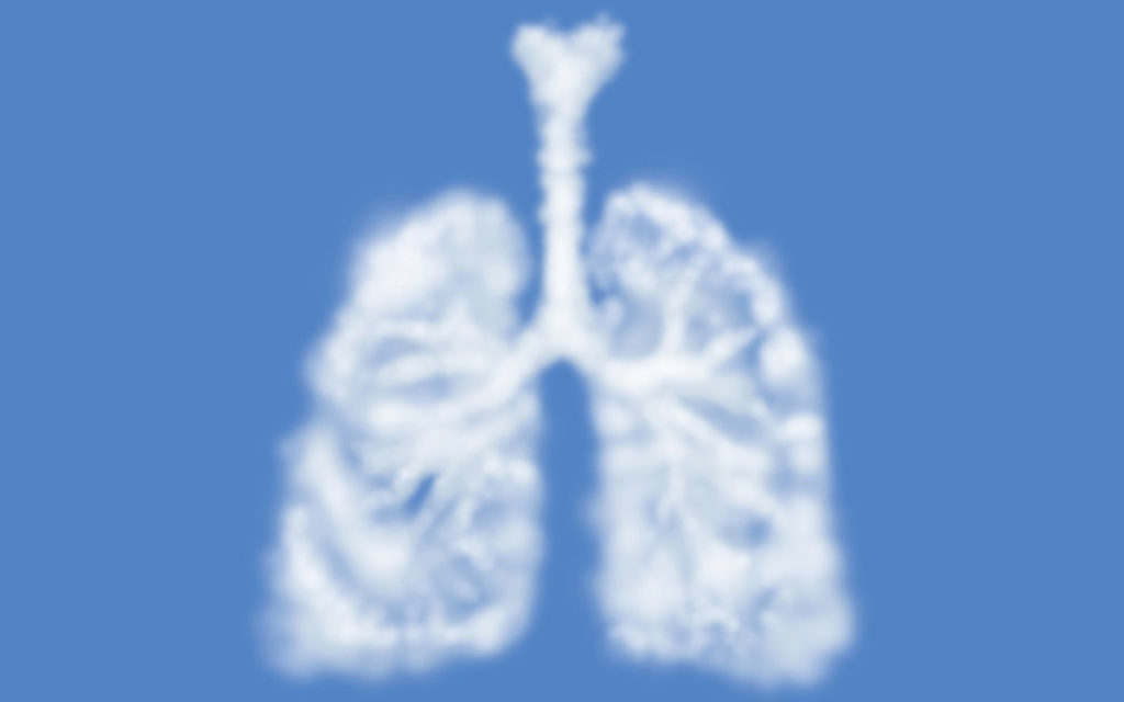 polmoni e aria pulita